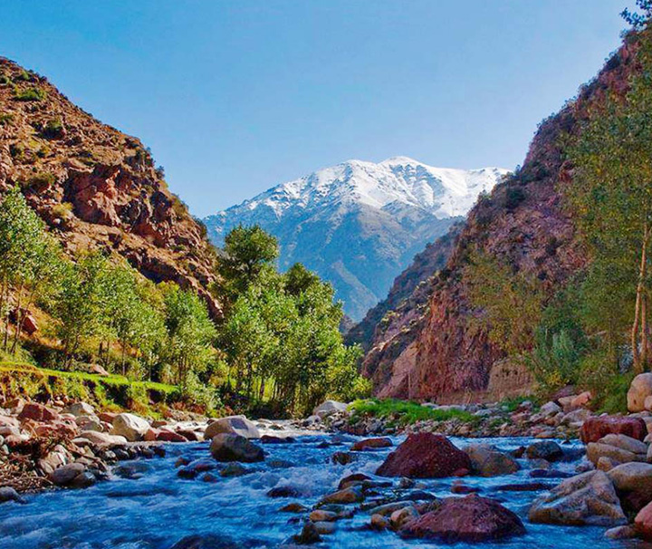Excursion Ourika | Vallee de l'ourika