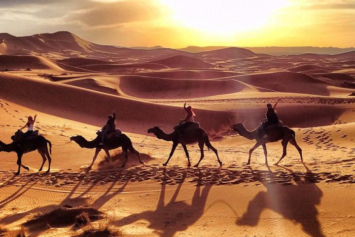 Desert-Maroc_-Balade-Dromadaires-desert-